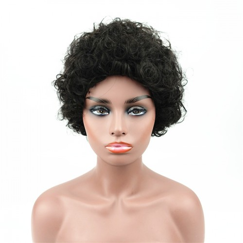 Afro Kinky Curly Wig Human Hair Short Wigs Black Women African American Wig